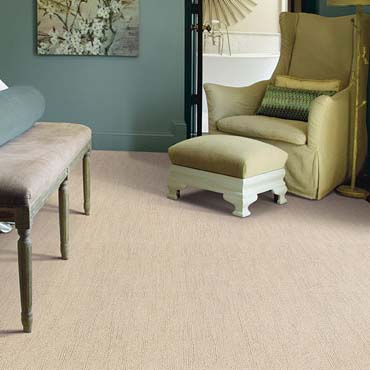 Caress Carpet by Shaw in Herndon, VA